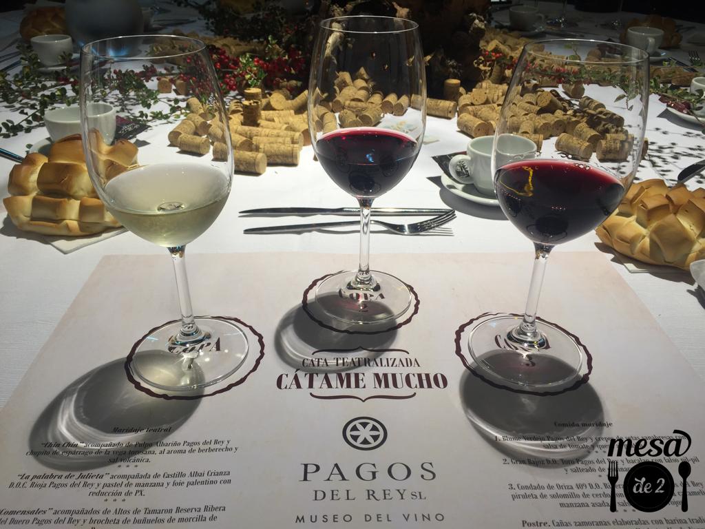 Cata de vinos en Pagos del Rey